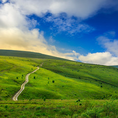 road through a meadow on the hillside