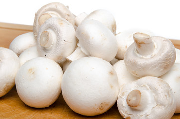 White parisian mushrooms