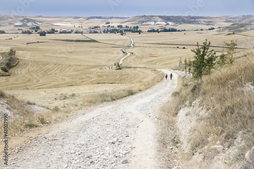 pilgrims walking a country road