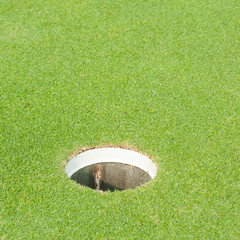golf course, lip of cup