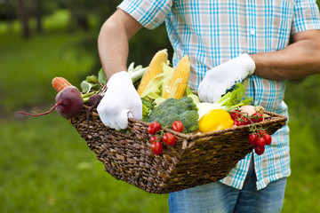 Man wearing gloves with fresh vegetables in the basket in his ha