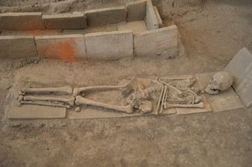 The skeleton of a Roman archaeological site Viminacium, Serbia