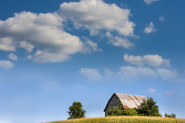A barn set against a blue sky in late summer