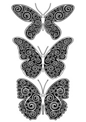 Set of three vector floral illustrations of butterfly.