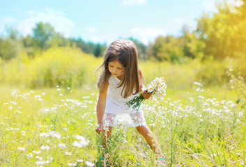 Little girl and flowers on the meadow in summer day