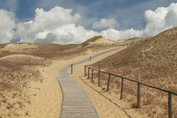 Visitors' path in Grey Dunes nature reserve