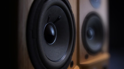Loudspeaker's driver beats