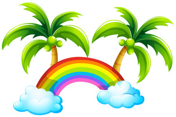 A rainbow and the coconut trees