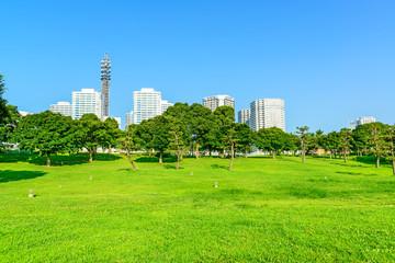 Landscape grass prospects the modern City buildings of landmark