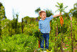 young boy with carrot enjoying life in countryside - 68045985