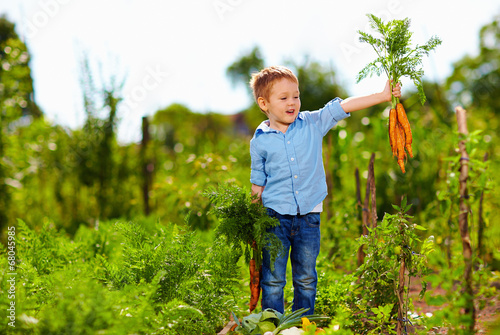 Leinwandbild Motiv young boy with carrot enjoying life in countryside