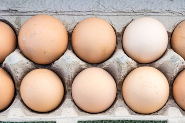 Fresh brown organic eggs at the market