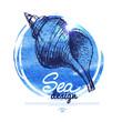 Seashell banner. Sea nautical design. Hand drawn sketch
