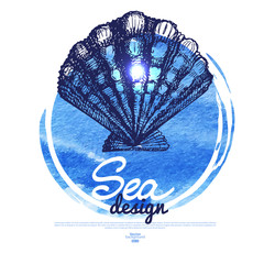 Seashell banner. Sea nautical design. Hand drawn sketch