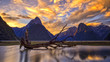 Milford Sound - 68049568