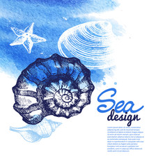 Seashell background. Sea nautical design.Œ
