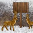 Winter - Schild - Rentiere
