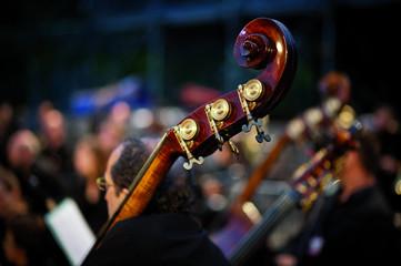 Contrebasse d'orchestre classique