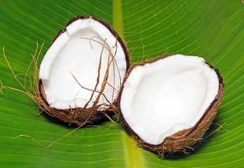 Coconut split into two halves © Arena Photo UK