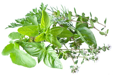 Green fresh herbs on a white.