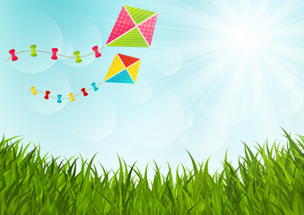 Sunny meadow with color kites