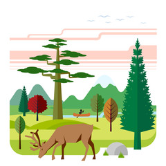 Flat vector illustration of nature