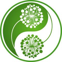 Dandelion Yin Yang