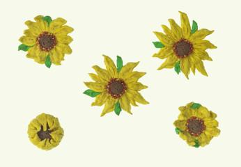 sunflower plasticine