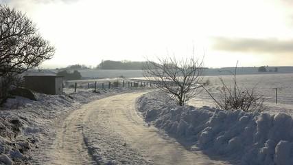 Winterlicher Pfad auf Ruegen