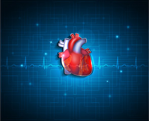 Healthy heart on a blue technology background