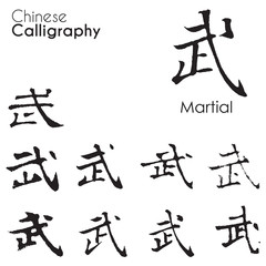 "Various kind of Chinese Calligraphy ""Martial"""