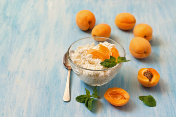 cottage cheese with apricot  and mint in blue
