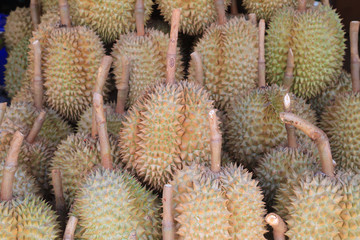 Durians in the market, famous fruit in Thailand