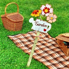 Summer Picnic on the Lawn