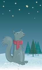 A squirrel in the snow. Very cold tonight