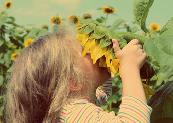 little girl smelling sunflower - vintage retro style
