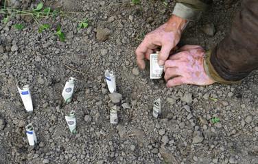 Farmer planting money