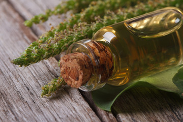 Extract of plantain in a glass bottle horizontal