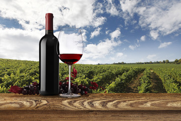 landscape of vineyards with bottle, glass of wine and bunch of g