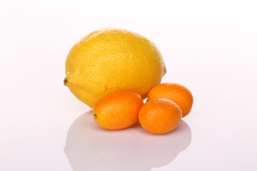 Lemon and tangerine, kumquat with shadow