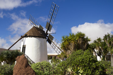 Windmill of Antigua