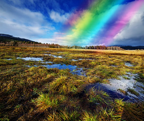 wet landscape with a rainbow