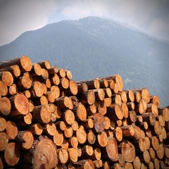 Lumber stack in Italy