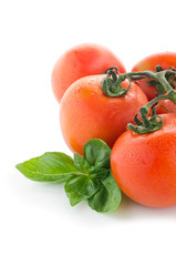 Fresh ripe tomatoes, isolated on white background