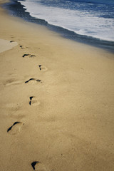 Foot prints in sand