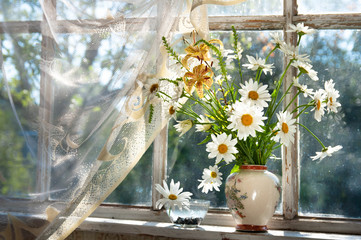 chamomilie flowers bouquet on the window sill