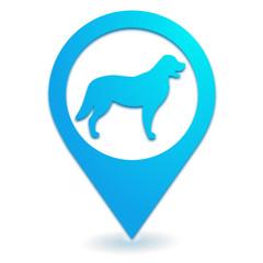 chien sur symbole localisation bleu