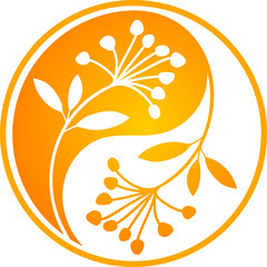 Orange Yin Yang