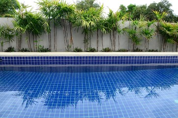 Residential inground swimming pool in backyard