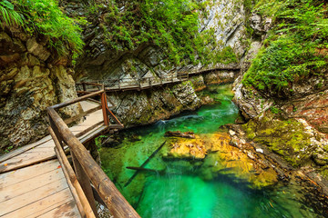 Vintgar gorge and green river,Bled,Triglav- Slovenia